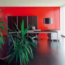 Bureau de Direction Design Corium de FANTONI.